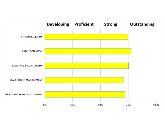 LeaderFit Report - Likelihood of Effective Competency Performance – Example Extract